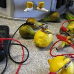 Investigatory-Project-Fruit-Battery