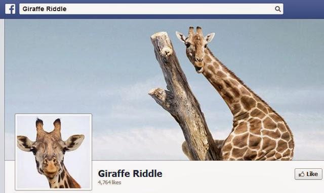 Giraffe Riddle on Facebook