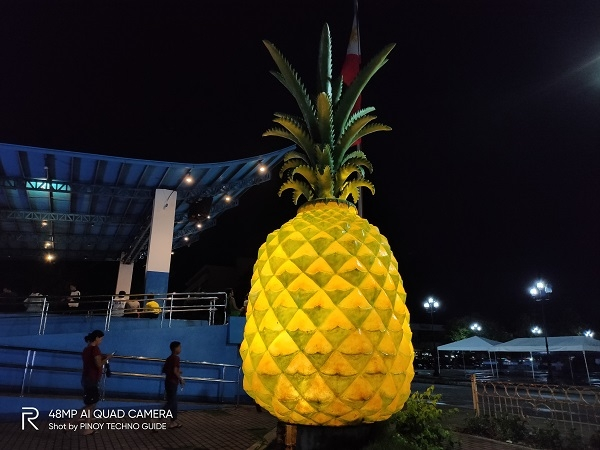 Pineapple statue by Realme 5 Pro.