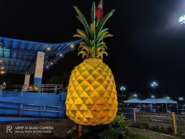 Pineapple statue by Realme 5 Pro with Nightscape mode.