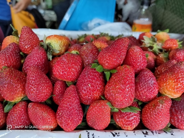 Strawberries by Realme XT