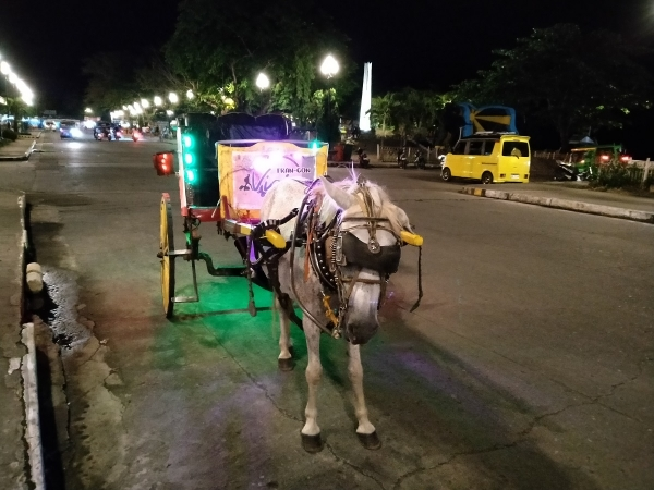 Horse carriage at night by Realme 5i.