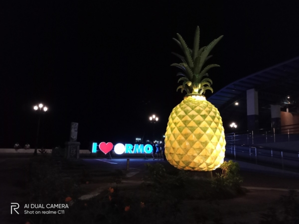 realme C11 sample picture (pineapple statue at night, auto)