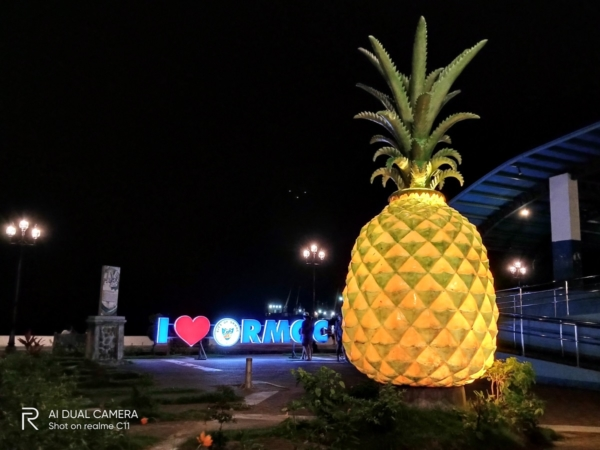 realme C11 sample picture (pineapple statue at night, Night mode).