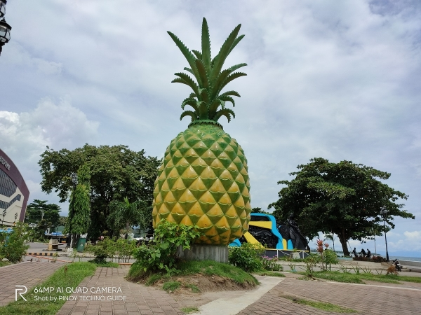realme ZX3 SuperZoom sample picture (pineapple statue, normal).